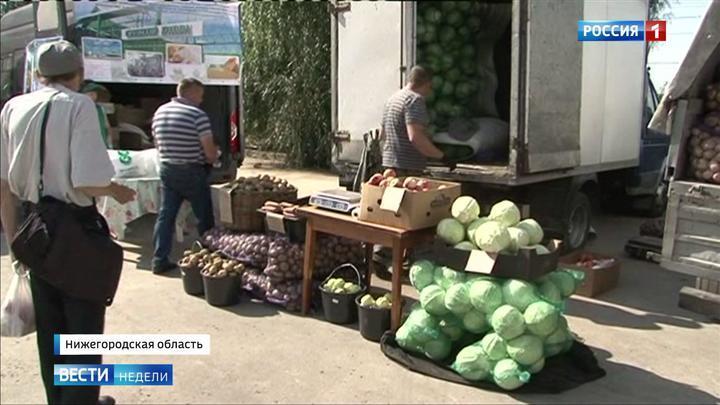 Развитие Нижегородской области: любовь к работе и поиску новых возможностей