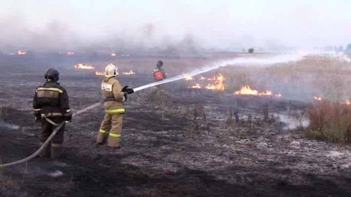 Природные пожары в Оренбуржье: огонь из Казахстана может прийти снова