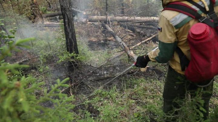 Пожары в Иркутской области: очаги локализованы