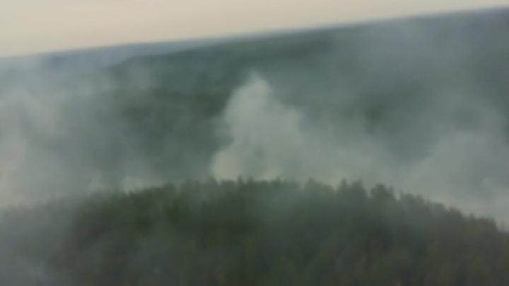 Площадь природных пожаров под Красноярском выросла на сто тысяч гектаров