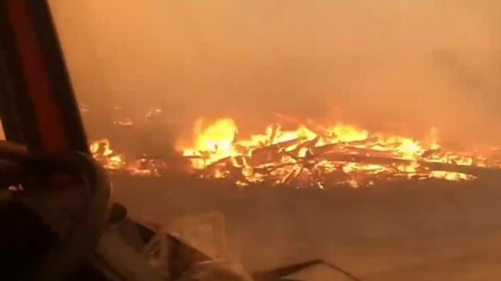 Сибирь горит: лесные пожары охватили уже 3 миллиона гектаров