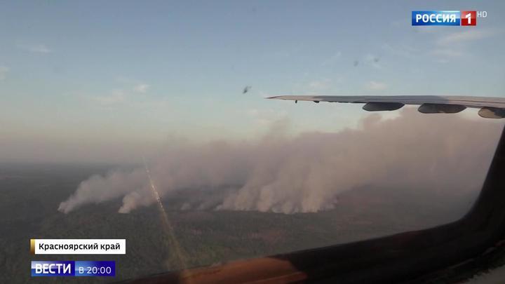Тушение и на земле, и в небе: скорость распространения пожара в Сибири сократилась в 5 раз