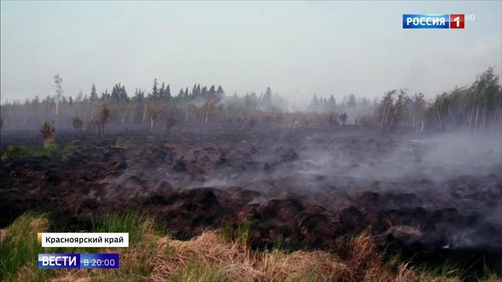 МЧС: чиновники усугубили ситуацию с пожарами, но первопричина не в них