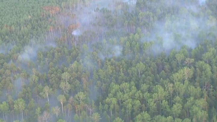 Борьба за горящую тайгу: локализовано еще 38 очагов лесных пожаров