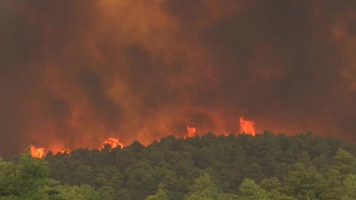 На греческой Эвбее эвакуируют жителей из-за лесных пожаров