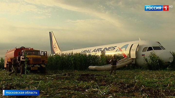 Аварийный Airbus остается на кукурузном поле