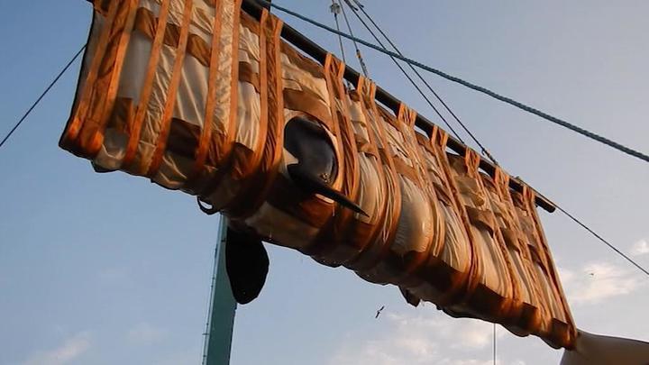 Последних косаток из китовой тюрьмы загрузили в фуры