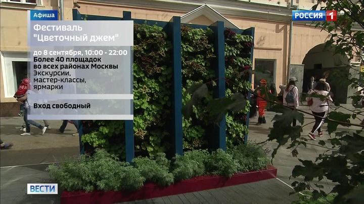 Цветущие сады, казачья станица и ночь кино: выходные в Москве