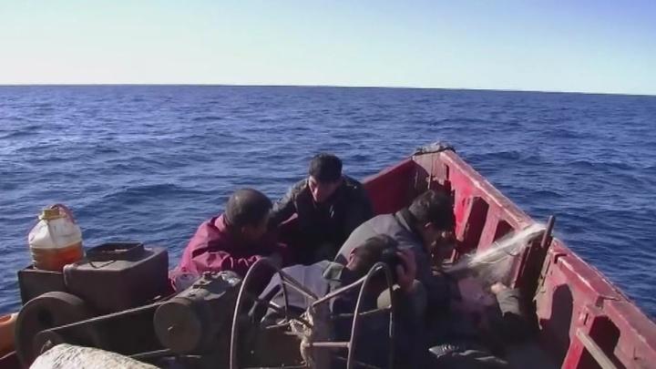 Следователи начали работу с пограничниками, пострадавшими от нападения корейских браконьеров