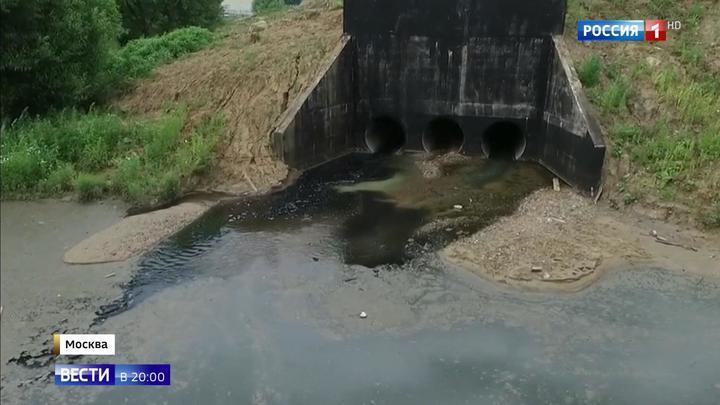 Ядовитый пруд в Новой Москве: кто сливал в водоем отходы с аммиаком и формальдегидом
