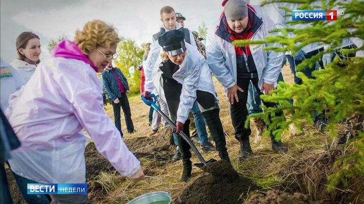 """""""Сохраним лес"""": к трем миллионам россиян присоединились знаменитости"""