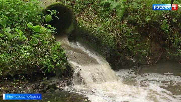 Серая пена и невыносимый запах: реку в Подольске превратили в канализационный сток