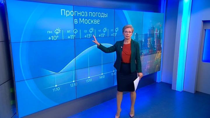 """""""Погода 24"""": восемь авиарейсов было задержано в Краснодаре из-за густого тумана"""
