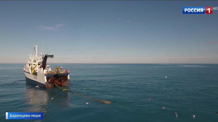 Запасов креветки, выловленной в Баренцевом море, хватит минимум на 2 года