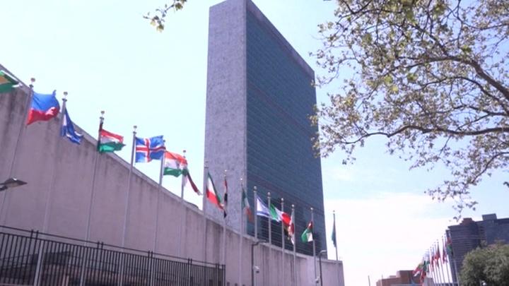 Геннадий Кузьмин: в ООН поддержали Россию в визовом конфликте с США