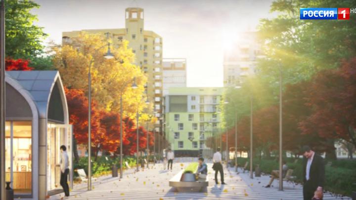 Реконструкция Петровского парка: москвичи опасаются за судьбу природного ансамбля