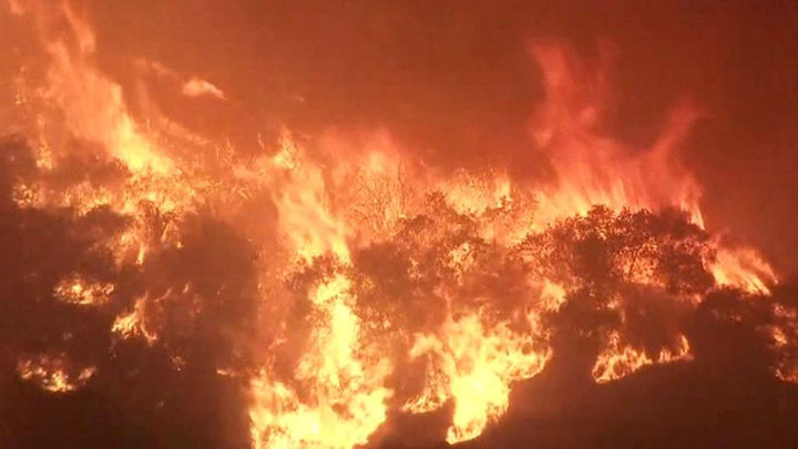 Выжженная земля: пожары в Калифорнии стали глобальной катастрофой