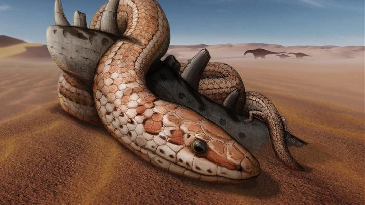 Почти сто миллионов лет назад у этих существ всё ещё имелась так называемая скуловая кость.