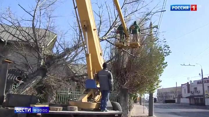 Ураган в Крыму: без света остались 82 населенных пункта