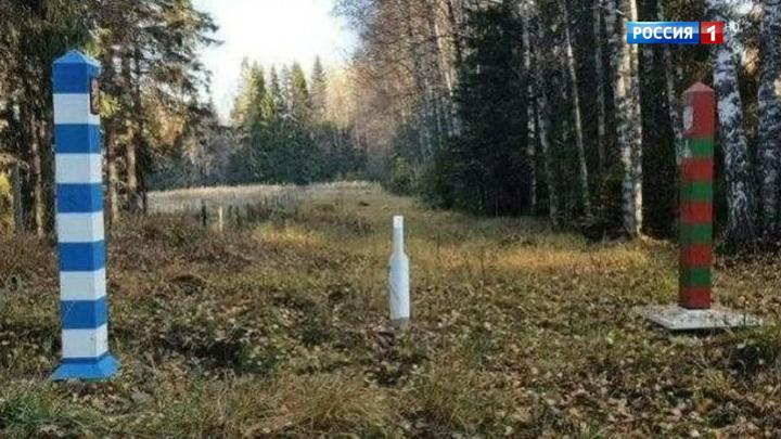 Выборгский Сусанин водил мигрантов по лесам Ленинградской области