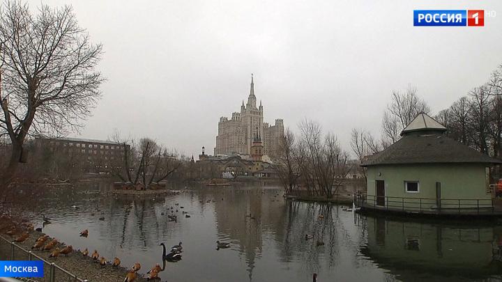 Минусы плюсовой погоды: в Москве ожидается новый температурный максимум