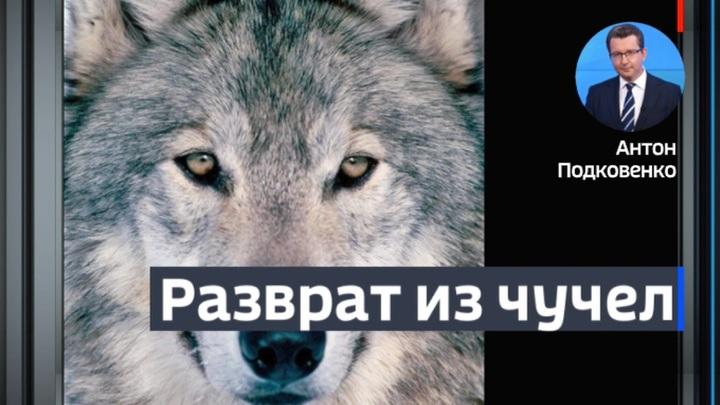 Вести в 22:00 с Алексеем Казаковым. Эфир от 17 февраля 2020 года