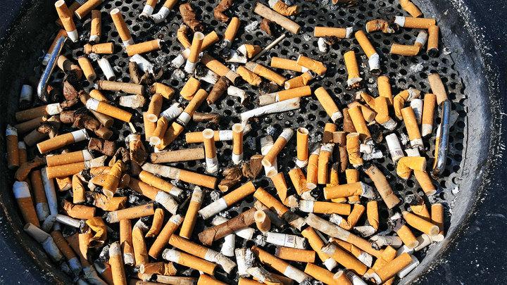 Компании производящие табачные изделия табачные стики для iqos цена в пятерочке