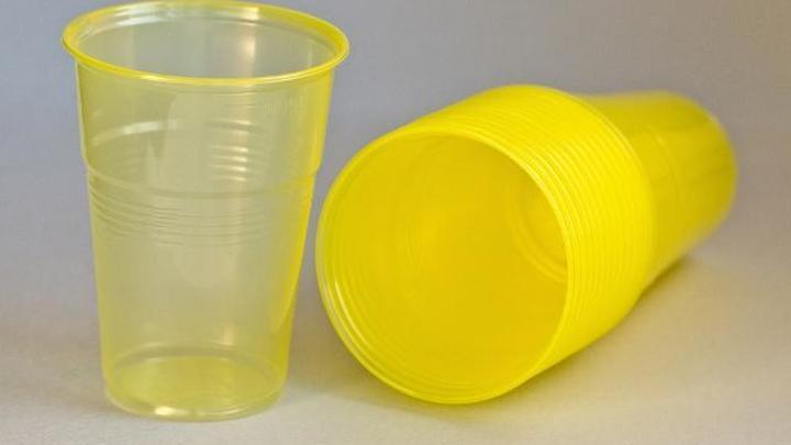 Окончательно запретить упаковки из пластика в России планируется в 2024 году