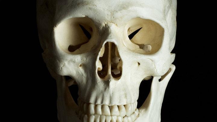 У храма в центре Москвы нашли человеческие кости, завернутые в ковер