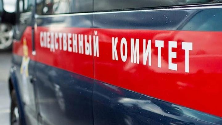 Под Ростовом бабушка призналась в убийстве новорожденного внука