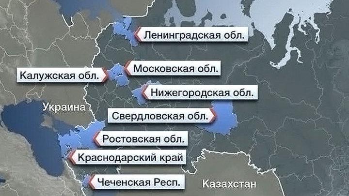 Реплика Александра Привалова. Университет университету волк
