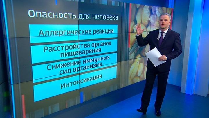 Продуктовая паника: запасая гречку, готовьтесь к моли и хрущаку