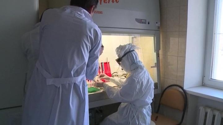 Частные лаборатории подключаются к тестированию на коронавирус