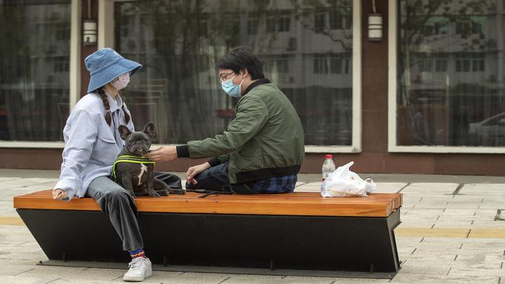 ВОЗ: пандемия могла начаться из-за торговли животными в Ухане