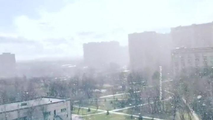 """""""Погода 24"""": в Европейскую Россию вернулась зима"""