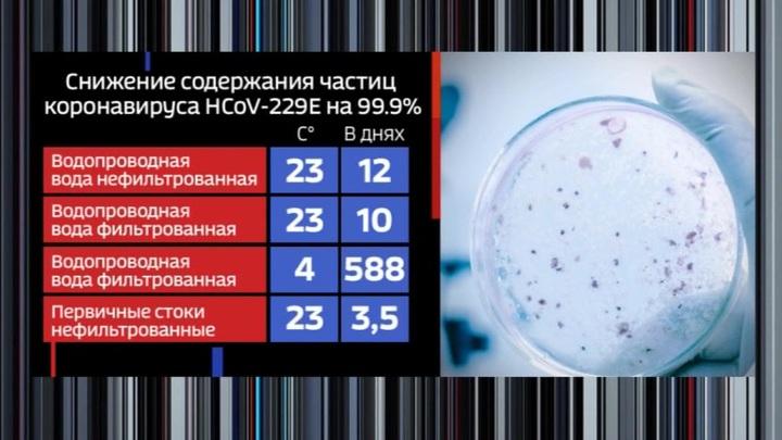 В системе водоснабжения Парижа обнаружили коронавирус