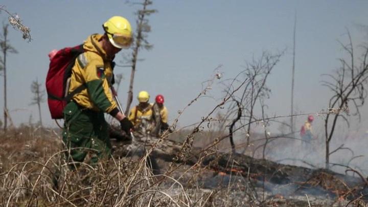 Ситуация с природными пожарами в России остается непростой