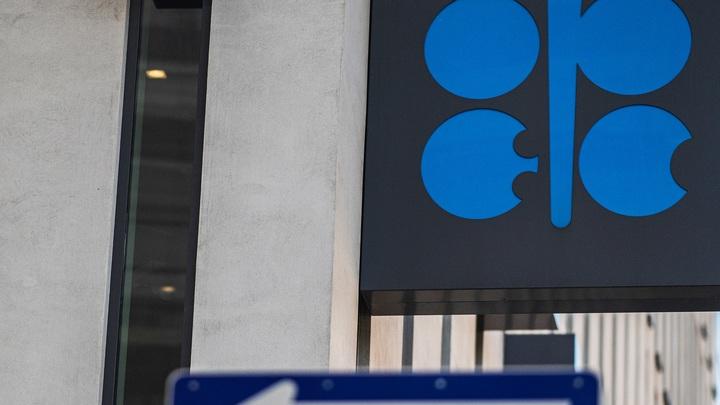 ОПЕК ожидает сокращение спроса на нефть с 2023 года