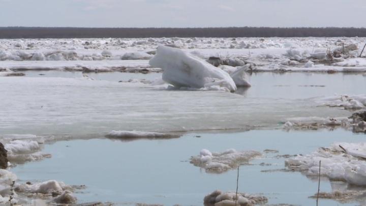 Москва-река начала освобождаться ото льда
