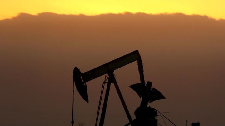 Россия сократит экспорт нефти в Польшу на 23%