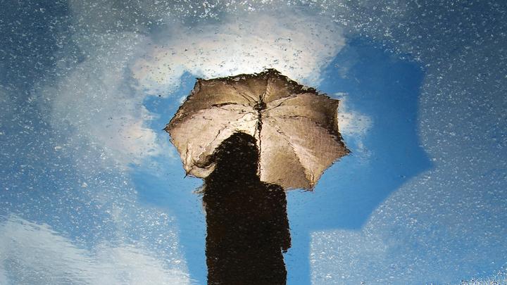 Ласковое тепло вытесняют дожди