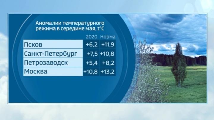 """""""Погода 24"""": по-весеннему жаркая погода вернется на следующей неделе"""