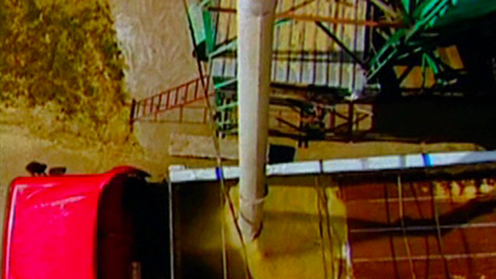 На Украине в крупной недостаче зерна обвинили мышей