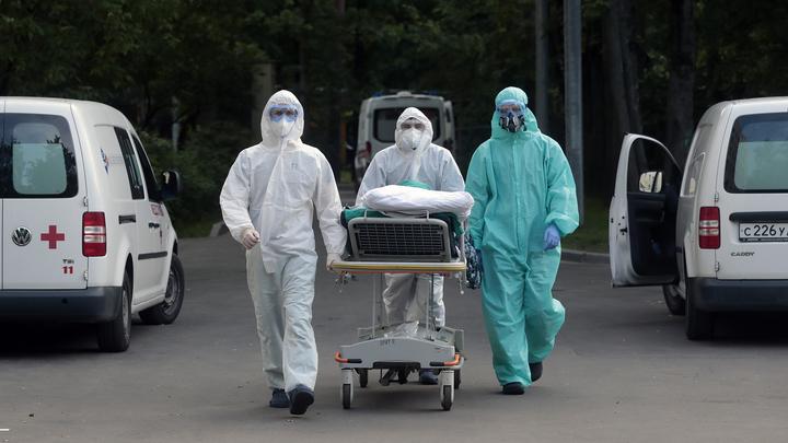 COVID-19: за сутки в России выявлено 23 508 новых заболевших