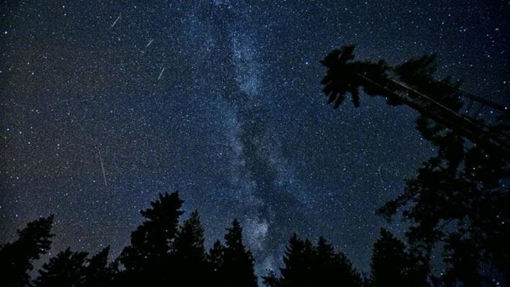 В августе жители России увидят мощнейший звездопад года