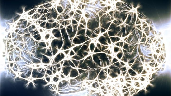 Новый гидрогель поможет при заболеваниях мозга, включая онкологические.