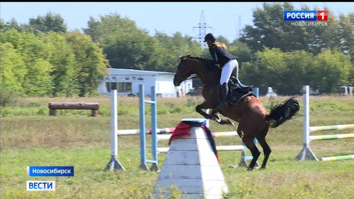 поздравление в конном спорте замечательной