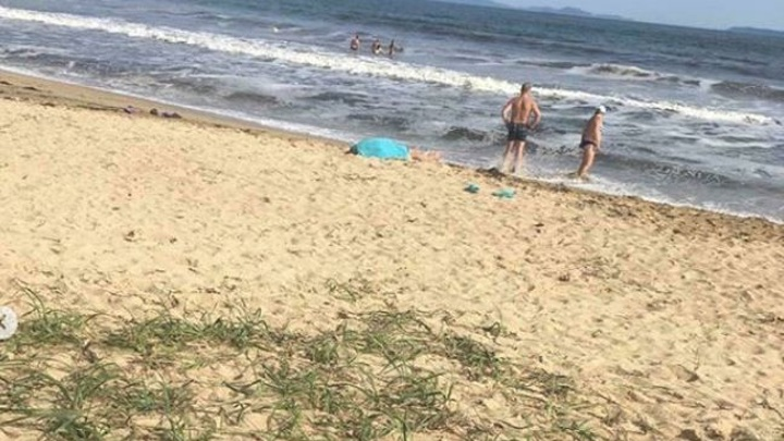 В Приморье после массовой гибели морских птиц проверят воду