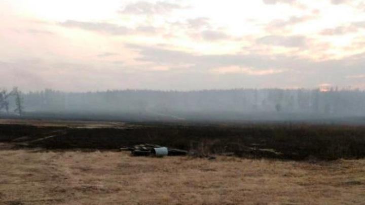 В Бурятии виновник лесного пожара получил условный срок