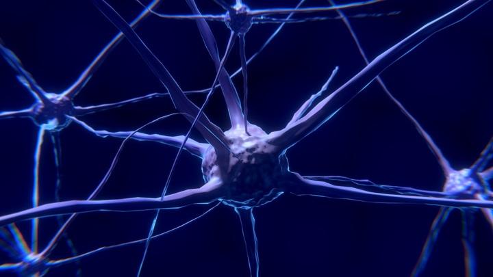 Биологи вырастили из стволовых клеток нейроны, необходимые для борьбы с заболеванием.
